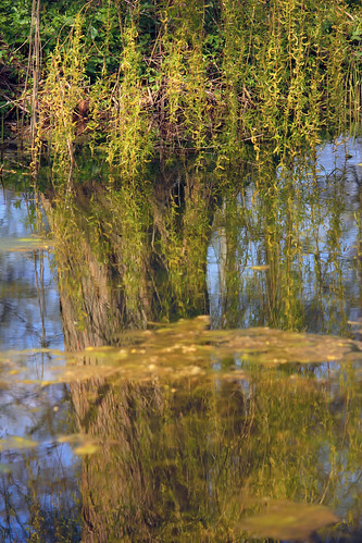 """Auf der Landesgartenschau (20) • <a style=""""font-size:0.8em;"""" href=""""http://www.flickr.com/photos/69570948@N04/26741732722/"""" target=""""_blank"""">View on Flickr</a>"""
