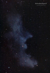 IC 2118 - Witch Head Nebula (AstroBackyard) Tags: camera travel sky cloud black nature beautiful star big colorful time head witch space ghost grand science gas creation nebula astronomy supernova dust universe cosmos