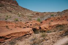 5R6K2989 (ATeshima) Tags: arizona nature havasu