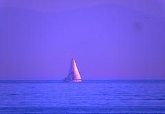 sailboat (bilal gldoan) Tags: blue white sailboat boats good weeks