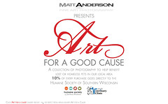 Art for a Cause Slide (Matt Anderson Photography) Tags: usa art wisconsin for vet madison clinic society janesville humane cause veterinary