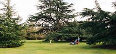 Chillin' (lorenzoviolone) Tags: park trees england playing london kids ball garden unitedkingdom greenwich strangers finepix fujifilm childs greenwichpark fujiastia100f fav10 mirrorless vsco vscofilm fujix100s x100s fujifilmx100s travel:uk=londonapr16