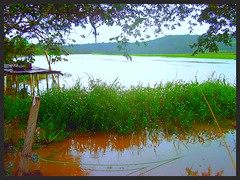 Rancho Cssia (21) (paulinhostradiotti) Tags: rio river grande minas gerais rancho pesqueiro carpe sojoo diem cssia whater flutuador