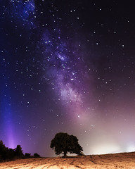 Milky... (afsincelik) Tags: longexposure sky tree night stars lights star milkyway