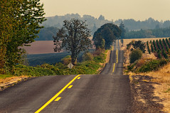 Country road (Thankful!) Tags: road summer oregon farm country lazy hazy humid