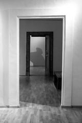 L'ombra (1.11 - Giovanni Contarelli) Tags: shadow blackandwhite white black doors shadows ombra ombre fujifilm porte biancoenero xseries xt1 fujifilmxt1