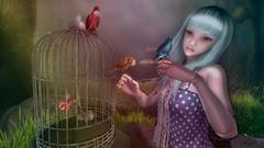 Free Bird (Anita Armendaiz) Tags: life moon bird hair shiny doll cage coco fantasy second ccb ambrosia shabby gacha pewpew