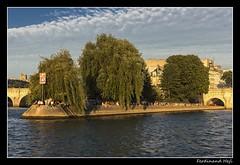 Pa - Paris_Square du Vert-Galant (ferdahejl) Tags: du vertgalant pa parissquare