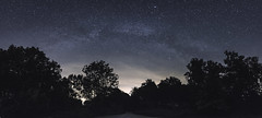 Star Scene. (velvetgoldmine82) Tags: park uk trees panorama film nature downs stars nikon angle pano south wide astro wanderlust national astrophotography longexpsoure 1424 vsco