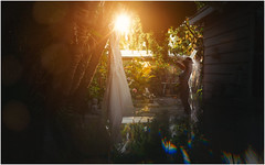 Shower.... (untiedshoes1) Tags: trees wedding light plants hot green naughty outside shower lights nikon florida prism hanging colourful weddingdress swimwear backlighting humid annamariaisland sneekpeak