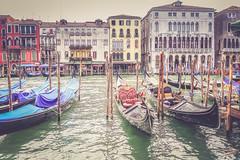 line of gondolas (lauradavison) Tags: venice italy water boats canal grand gondola venezia gondolas waterways