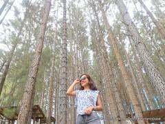 Woman-In-Digital-Dahilayan-Forest-Park-Bukidnon-010 (livingMarjorney) Tags: travels touristspot mindanao bukidnon dahilayanforestpark livingmarjorney womanindigital