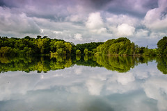Which way up...? (SimonTHGolfer) Tags: uk trees england lake reflection nature water clouds landscape suffolk nikon horizon reservoir d750 f4 eastanglia altonwater landscapephotography 24120mm simontalbothurnphotography