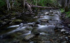 stepping stones (Alvin Harp) Tags: longexposure nature june oregon creek forest stream sony le silky 2016 mountainstream canyoncreek naturesbeauty silkywater teamsony sonya7rii alvinharp canyonvile