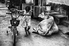 Playground (Feca Luca) Tags: street blackwhite reportage india asia children bimbi people outdoor nikon