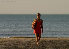 Belgian coast (Natali Antonovich) Tags: sea portrait nature water landscape seaside horizon lifestyle northsea stare romantic relaxation seashore seasideresort reverie romanticism belgiancoast wenduine seaboard