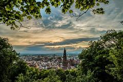 Freiburg from above (simonpe86) Tags: city trees stadt frame freiburg bume idyllic hdr mnster rahmen idylle freiburgimbreisgau