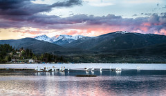 Pelicans on Shadow Mountain Lake at sunset (Vironevaeh) Tags: sunset mountain lake mountains west pelicans nature water birds outdoors scenery colorado scenic americanwest theamericanwest thewest shadowmountainlake
