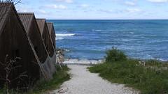 Summer (mpersson60) Tags: sea sweden sverige gotland hav