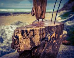 Driftwood of Bidart (Sand of Bidart) Tags: art beach de bokeh champs sable driftwood plage pays basque bois bidart flotte sulpture profondeur