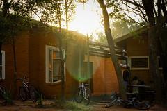 DSC_0127 (Vincius_Fontes) Tags: people sun sol nature bike raios de pessoas natureza bicicleta rays