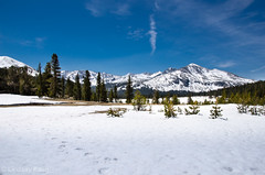 A View from the Young Lakes Trail (lindsay_kaun) Tags: california mountains landscapes yosemitenationalpark tiogaroad younglakestrail