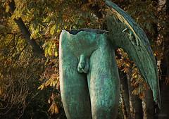 El sexo de los ngeles (Franco DAlbao) Tags: sculpture sex metal angel bronze lumix wing sexo escultura ala bronce ngel igormitoraj leicalens genitales dalbao francodalbao