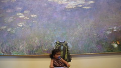 Water-Lilli (t_love_pdx) Tags: waterlilies monet clevelandartmuseum