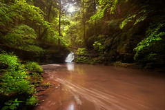 Morning Hike (Proleshi) Tags: trees naturaleza green nature water leaves landscape waterfall scenery natural scenic naturallight tokina greenery wispy verdure josephs jamal multipleexposures longexposures 1116 111628 d300s proleshi