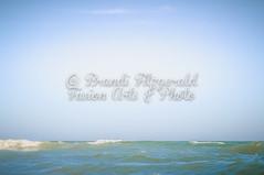 BrandiFitzgerald.LidoBeach018 (brandifitzarts) Tags: newyork beach waves scene longbeach shore eastcoast beachscene sandwriting lidobeach newyorkbeach brandifitzgerald sayingsinsand