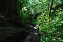 Old Mans Cave Gorge (thoeflich) Tags: ohio june gorge logan hockinghills oldmanscave 2013