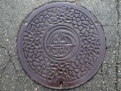 Soryo Hiroshima , manhole cover (広島県総領町のマンホール) (MRSY) Tags: house plant tree japan geotagged hiroshima 日本 manhole 木 家 植物 マンホール soryo 広島県 庄原市 総領町 geo:lat=3478437694146965 geo:lon=13307416793702942