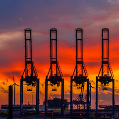 Container cranes #3 (JayPiDee) Tags: sunset germany deutschland harbor tramonto sonnenuntergang pentax hamburg sigma hafen atmospheric germania stimmungsvoll zeit amburgo containercranes k30 containerkrne friendlychallenges starsaward diamondsawards fotocompetitionbronze sigma18250dcmacro sigma18250mmf3563dcmacro