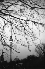 Fernsehturm (guido.masi) Tags: bw tree berlin tower film tv bn alexanderplatz fernsehturm ilfordhp5plus400 biancoenero berlino 2014 minox35gt pellicola visiva guidomasi httpswwwfacebookcomvisivafirenze