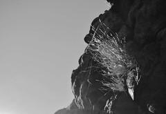 陰陽 (雯菇) Tags: life sky blackandwhite bw silhouette rock yang yin 黑白 ayersrock 生命 野草 陰陽 石壁 生生不息 大石頭 頑強