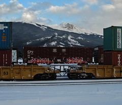 LEGAL, JAKE (YardJock) Tags: railroad art graffiti container spraypaint boxcar freighttrain rollingstock intermodal benching paintedsteel benchreport