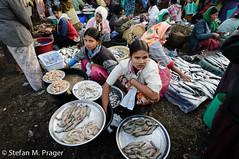 709-Mya-SITTWE-240.jpg (stefan m. prager) Tags: southeastasia burma myanmar markt birma fischmarkt handel sittwe sudostasien