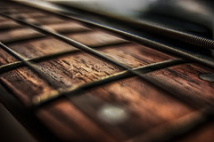 neck (Patryk Krzyzak) Tags: neck guitar sound strings gitara gryf prog progi struny dzwiek