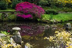 Japanse Tuin Clingendael 2014-02266 (Arie van Tilborg) Tags: japanesegarden denhaag thehague clingendael japansetuin clingendaelestate landgoedclingendael