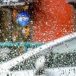 NYC Raindrops