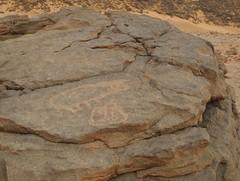 Egypt (ursulazrich) Tags: egypt gypten egitto rockart egypte petroglyphs westerndesert cupule uweinat gravuren