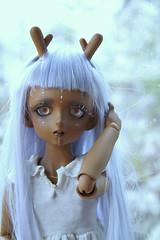 mielikki3 (JattenJorm91) Tags: cute doll horns bjd horn marisol purplehair bjddoll marisoll cobidoll