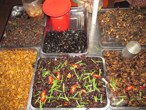 Marché aux insectes, Cambodge
