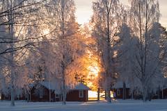 028A5622 (Byskan) Tags: winter vinter twilight december sweden resort sverige lightshow havsbad byske ljusspel byskanse byskan
