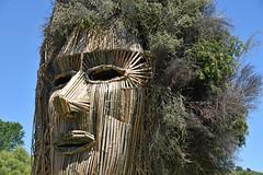 Kiwi Burn WYRD (Peter Jennings 17 Million+ views) Tags: new man wyrd burning peter burn zealand nz kiwi jennings