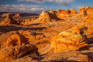 Crazy Geology - Candy Colours of the South Coyote Buttes at Sunset ( View Large! )