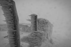 (der_steppenwolf_) Tags: winter blackandwhite snow storm blancoynegro wind viento neve tempest toscana nebbia inverno montagna freddo biancoenero vento appennino tempesta ghiaccio pratomagno bufera niccollandi