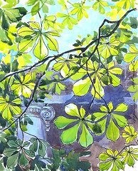 20-05-16s (Irina V. Ivanova) Tags: light sun tree green leaves ink watercolor sketch spring branch outdoor drawing chestnut 365sketches