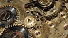 Listen to the time passing (debahi) Tags: light detail macro clock nikon time flash sigma ring timepiece d750 clockwork themed cogs gears mechanism strobe steampunk ticktock 105mm tiktok strobist macromondays