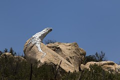 Lizard Rock (W9JIM) Tags: lizard 7d geocache w9jim 105mm 24105l gc6kgbf